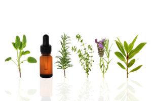 Mediherb Essential Oils - Harmonic Balance Chiropractic York PA